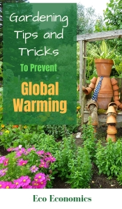 Gardening Tips and Tricks to prevent global warming
