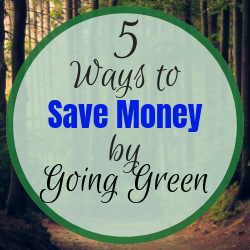 5 ways to save money by going green