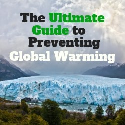 The Ultimate Guide to Preventing Global Warming