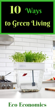 10 ways to Green Living