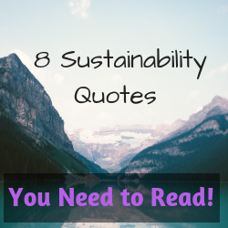8 Awesome Sustainability Quotes You Need to Read!
