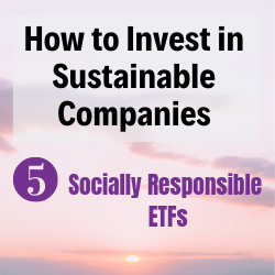 How to Invest in Sustainable Companies_1