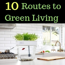 10 Routes to Green Living
